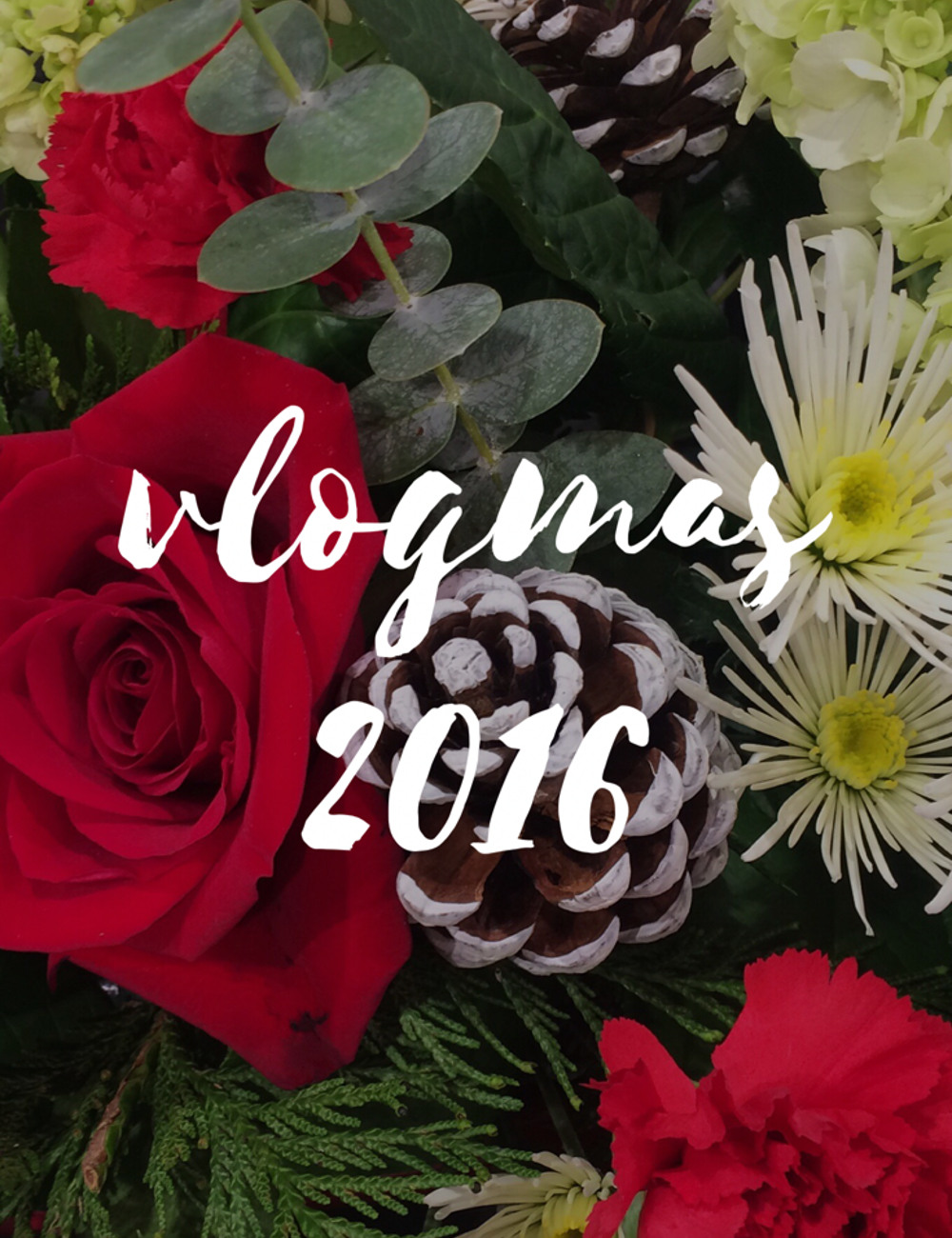 vlogmas 2016 - san francisco holiday vlogs