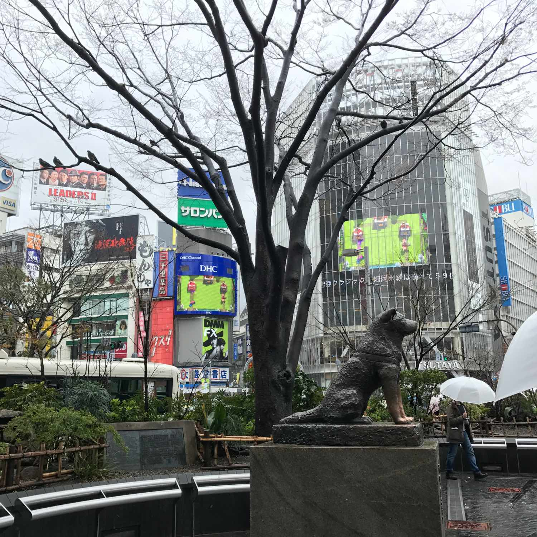 hachiko statue shibuya station tokyo
