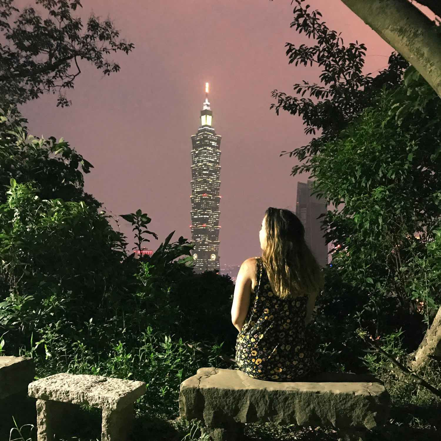 taipei 101 view from elephant mountain at night