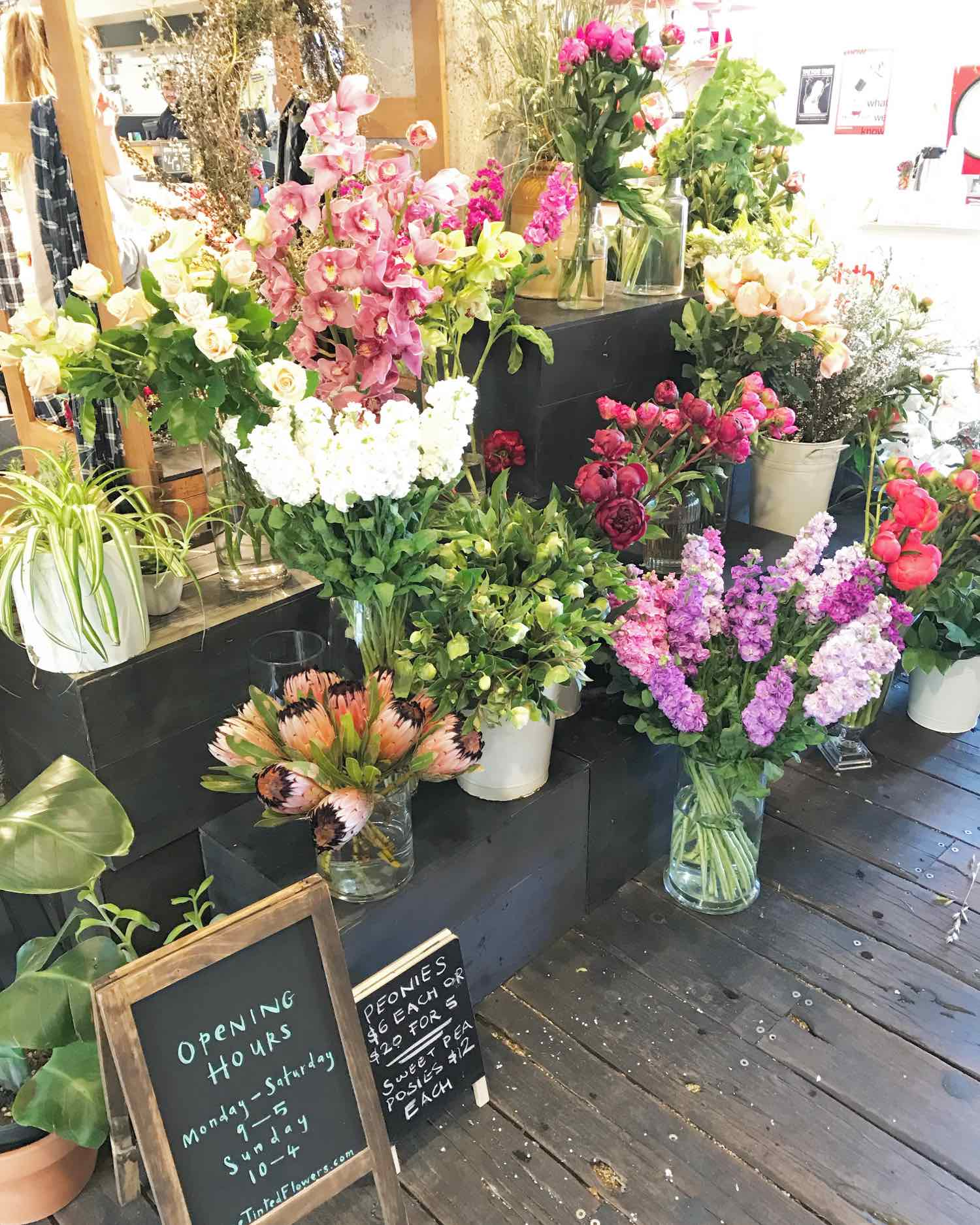 Flower Stand in Ponsonby Central Auckland