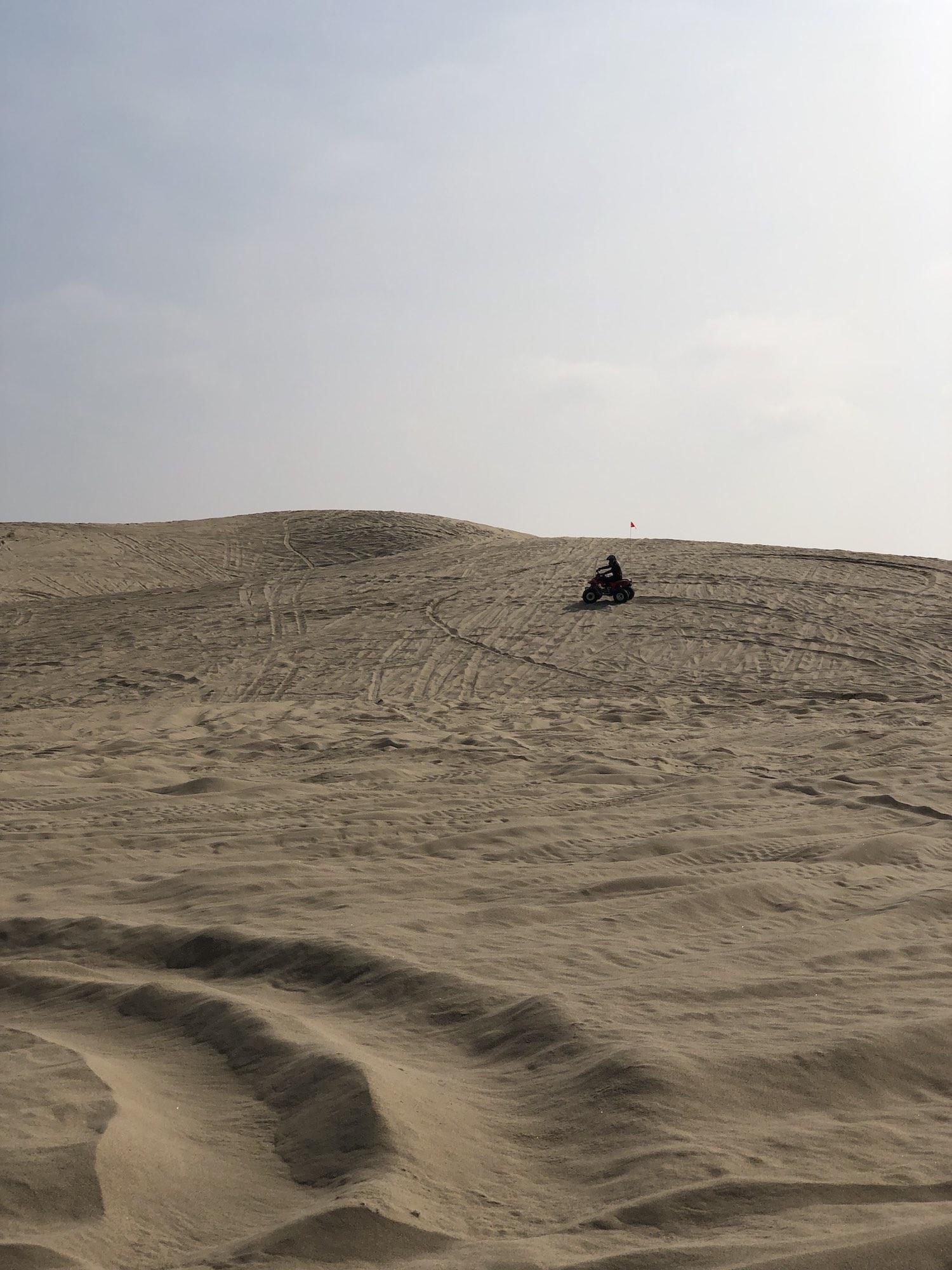 Steve's ATVs on Oceano Dunes