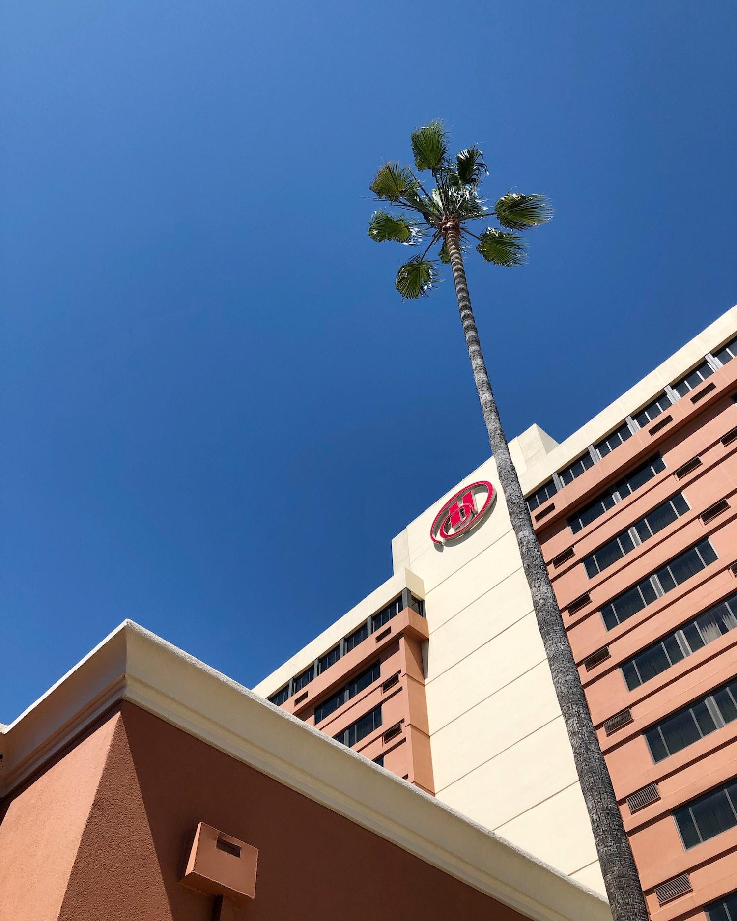 Hilton Concord Hotel