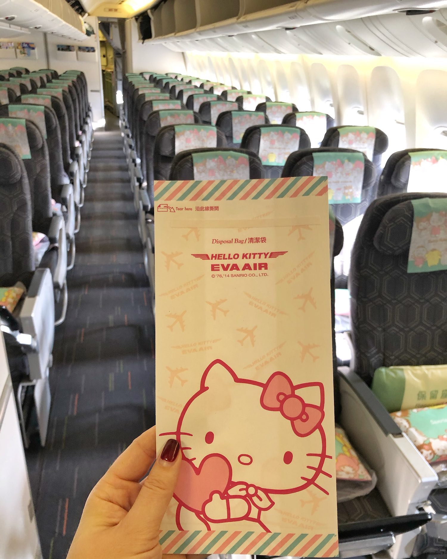 EVA Air Hello Kitty Barf Bag